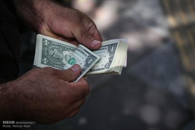 بازگشت برخی از کالاها به فهرست دریافت ارز دولتی